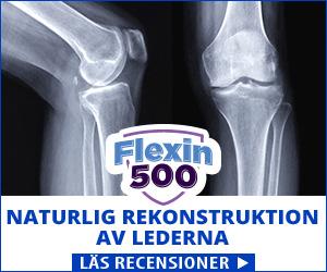 Flexin500 - knän